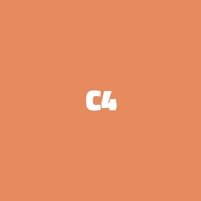 Bilde av C4