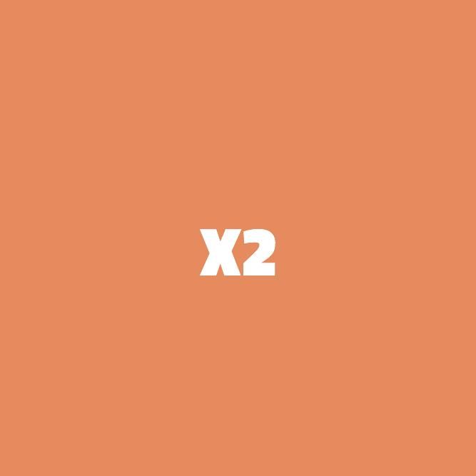Bilde av X2