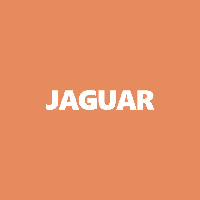 Bilde av Jaguar