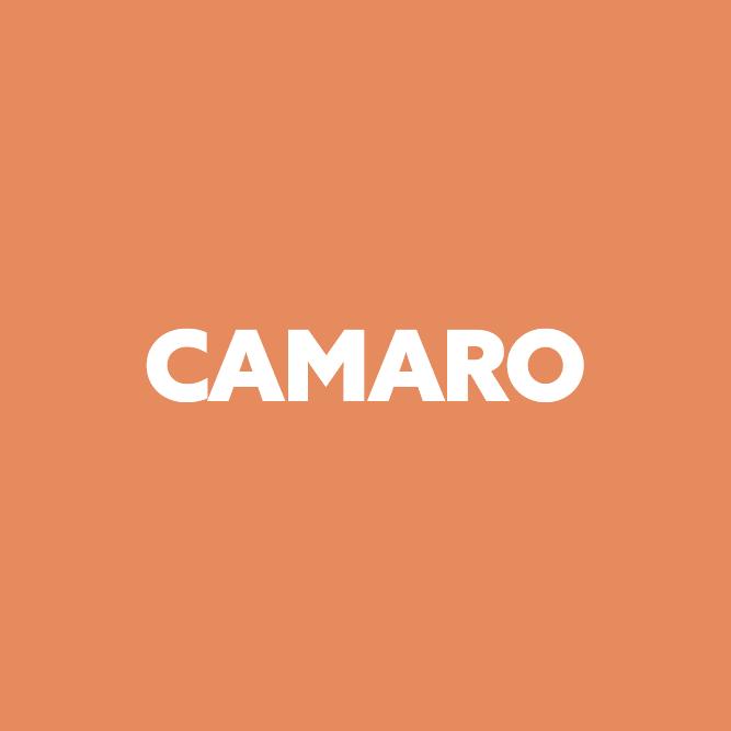 Bilde av Camaro
