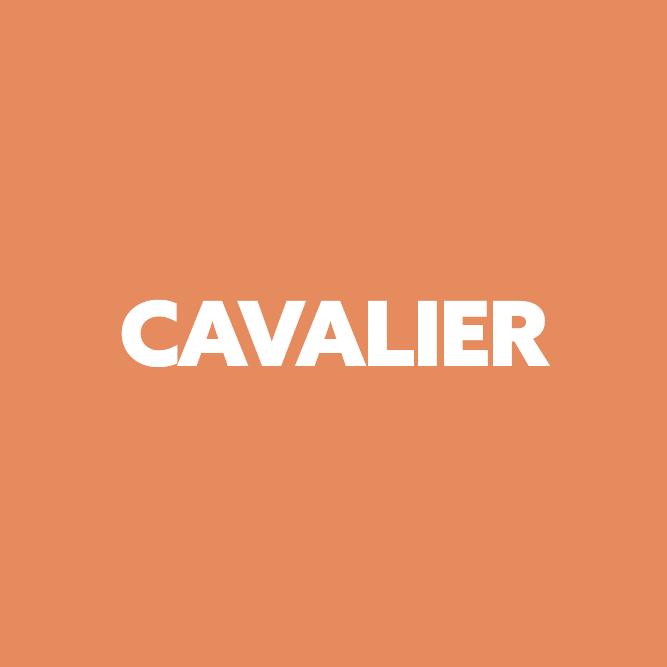 Bilde av Cavalier