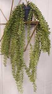 Bilde av Hengeplante 50 cm naturtro