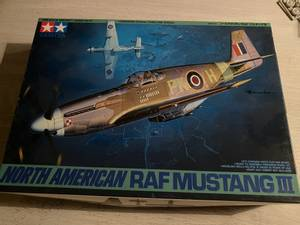 Image of N.A. RAF Mustang III
