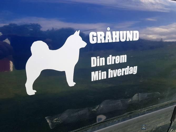 Bilde av Gråhund Din Drøm Min Hverdag Hvit Klistremerke