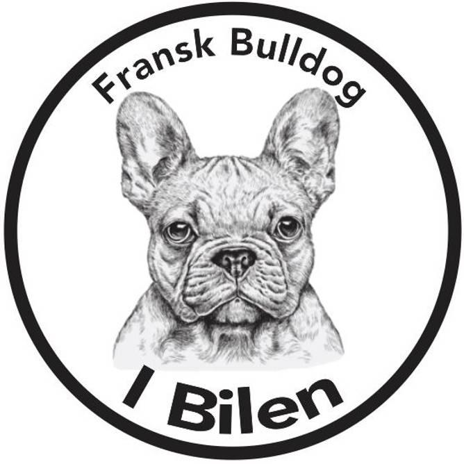 Bilde av Fransk Bulldog I Bilen Klistremerke