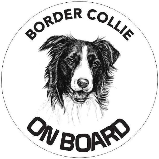 Bilde av Border Collie on board klistremerke