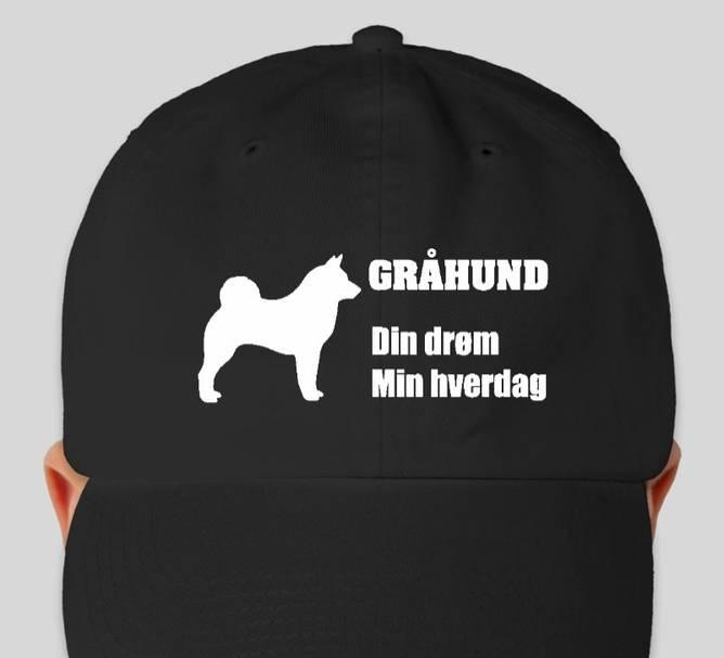 Bilde av Caps Gråhund Min Drøm, Din Hverdag