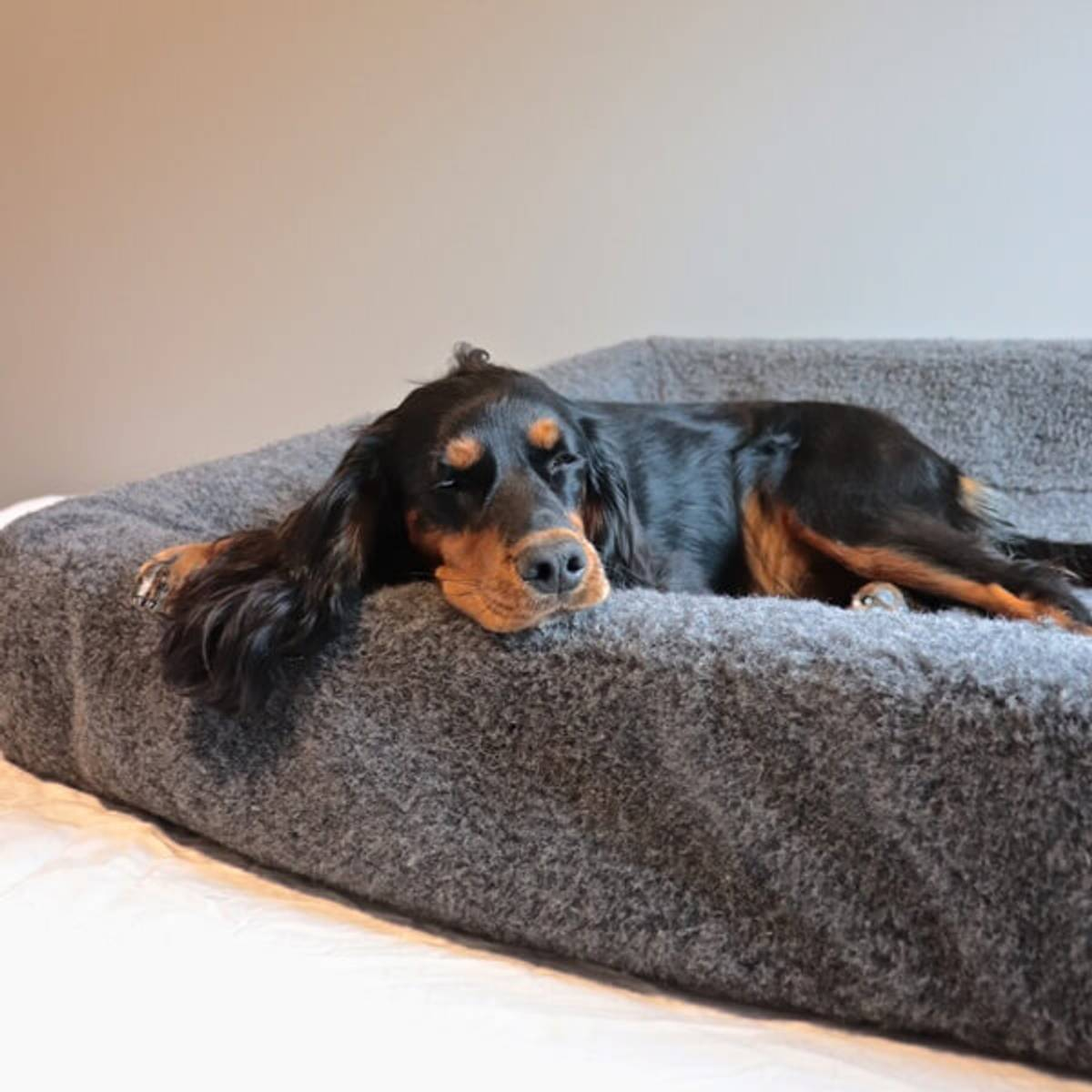 Wool cover for dog bed