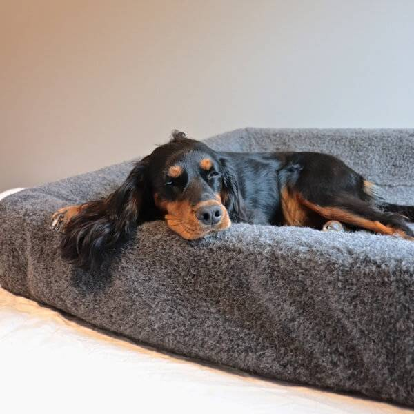 Image of Wool cover for dog bed
