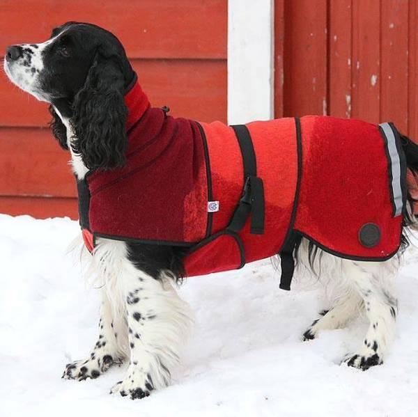 Image of AURORA - Canelana wool coat