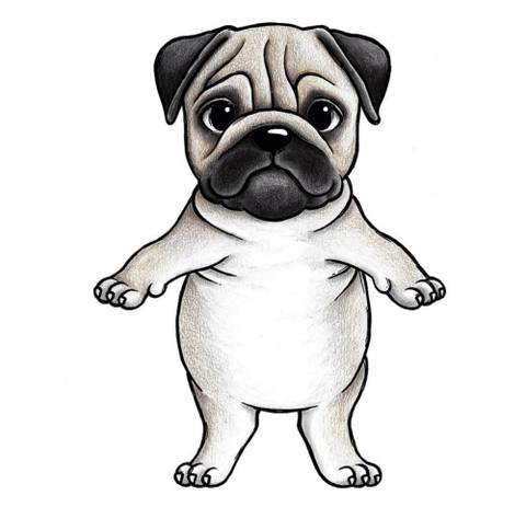 Bilde av Wallsticker - Prince the Pug - Stickstay