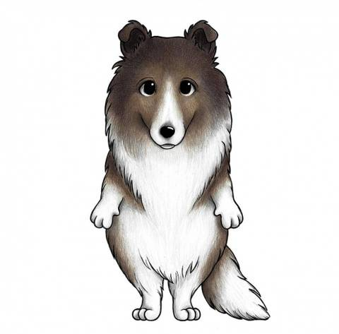 Bilde av Wallsticker - Cookie the collie - Stickstay