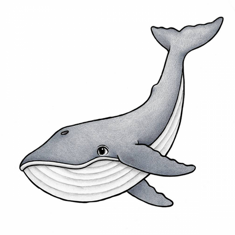 Bilde av Wallsticker - Mr Big the blue whale - Stickstay