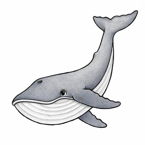 Bilde av Wallsticker - Mr Big the blue whale - Stickstay