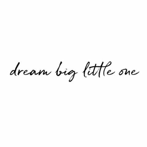 Bilde av Wallsticker - Dream big little one - Stickstay