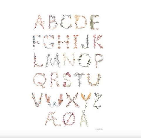 Bilde av Poster ABC (50x70 cm) - Mushie