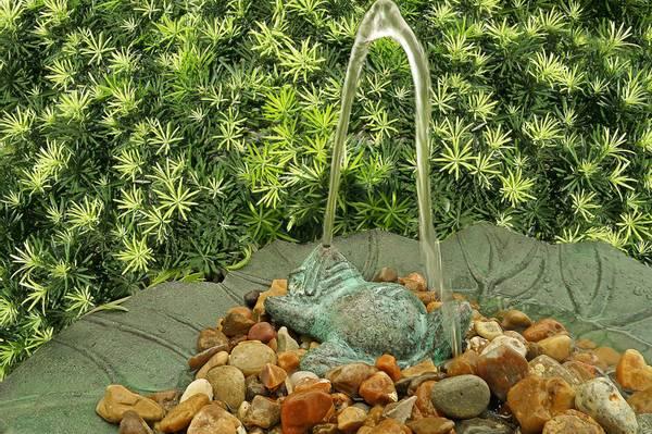 Fontene frosk i bronse, 12 cm