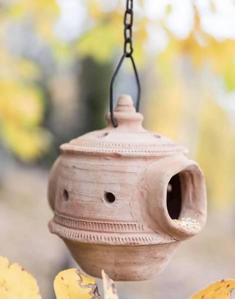 Fuglematere i terracotta, lys