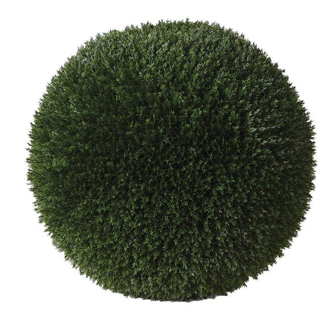 Bilde av OUTDOOR PODACARPUS TOPIARY