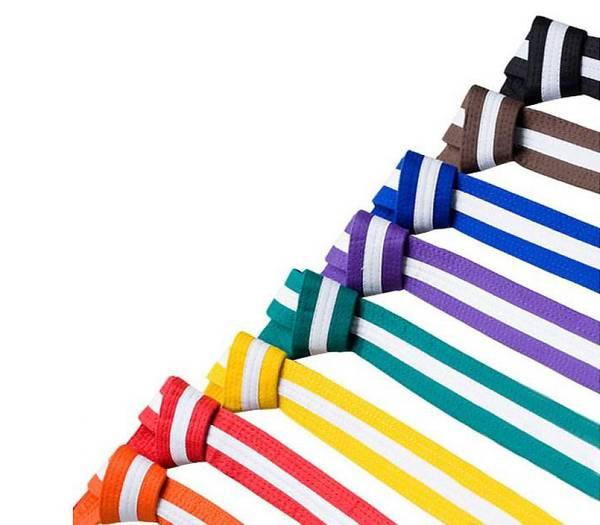 Bilde av Farget belte med hvit stripe