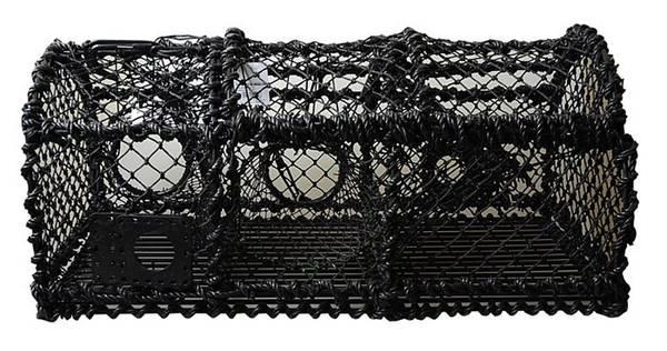 Bilde av Teine for skalldyrfiske 10 kg