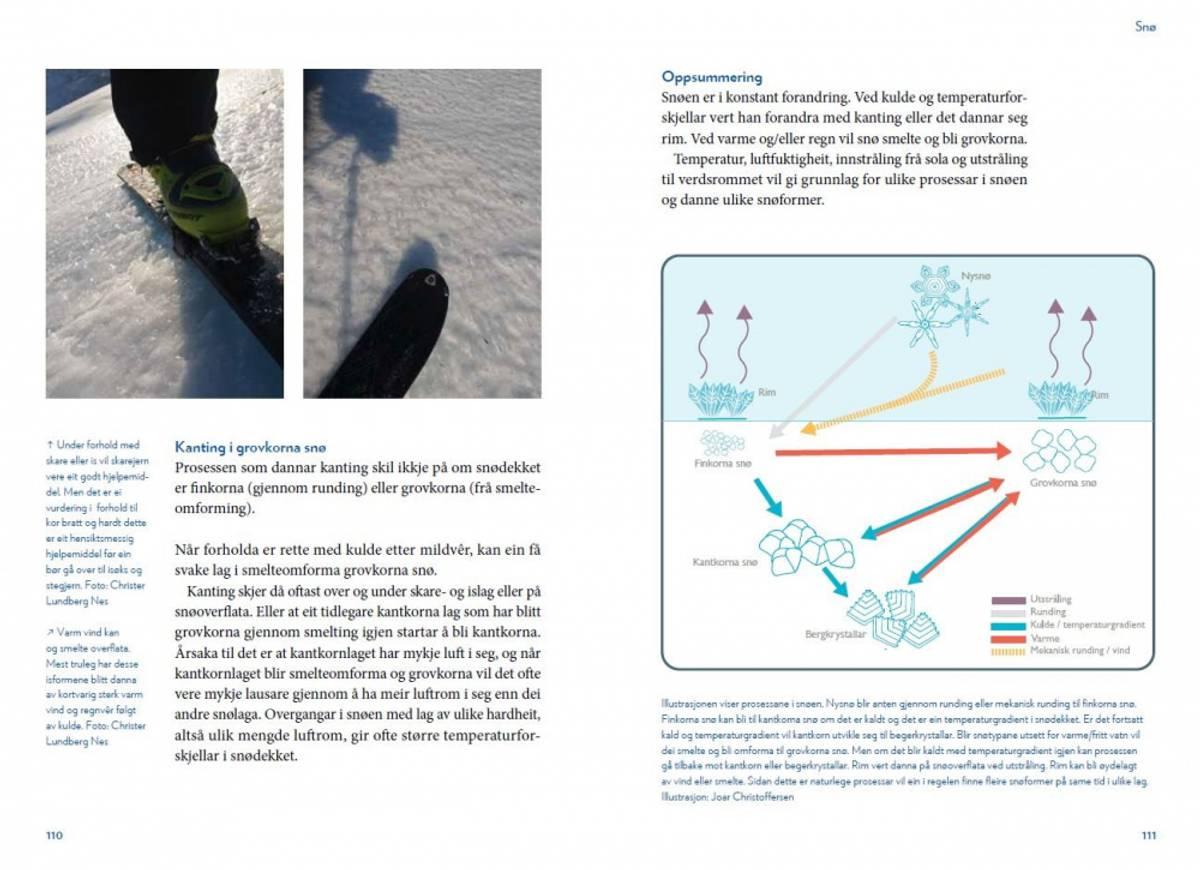 Skikompis Snøskred og trygg ferdsel