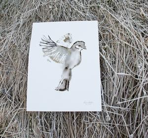 Bilde av Elise Stalder, Vinterfugl