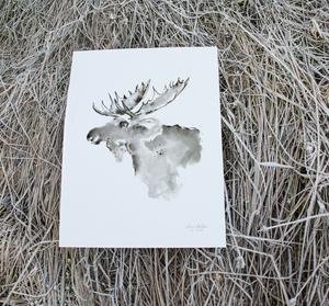 Bilde av Elise Stalder, Skogens konge