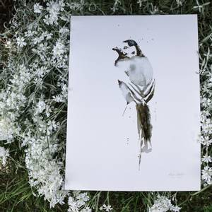 Bilde av Elise Stalder, Linerle 30x40