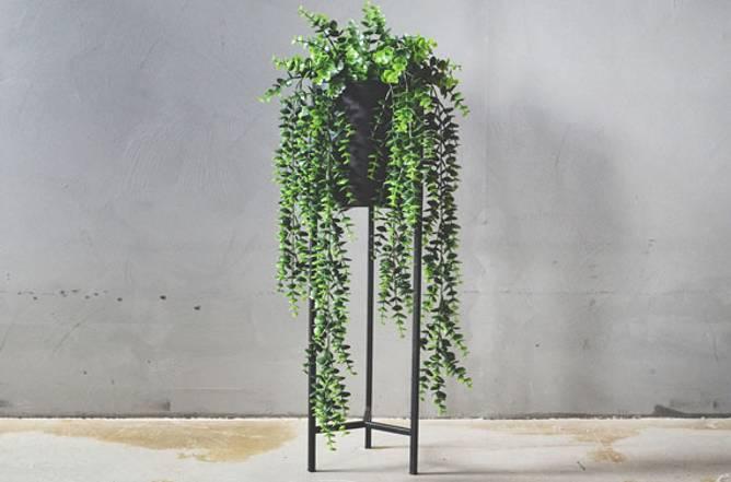 Bilde av Hengeplante A 66 cm.