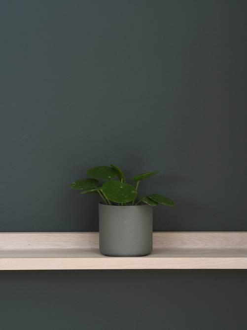 Bilde av Mini Potte 8cm Oliven