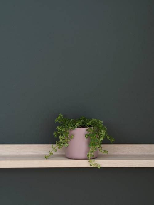 Bilde av Mini Potte 8cm Dusty Rose