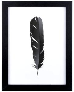 Bilde av Trykk m/sort ramme sort fjær