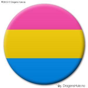 Bilde av  Button: Flagg Pride Pan