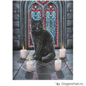 Bilde av Lerretstrykk: Lisa Parker: Sacred Circle 19x25cm