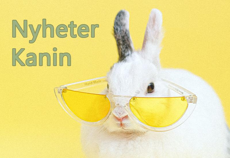 Kanin Høy Burstrø Kaninfòr Mat-kanin Frøstenger-kanin Aktivitet-kanin Klotang-kanin Kanin-børste Gnagepinner-kanin Kaninsnacks Kaninseng Transportbur-kanin Treflis-kanin