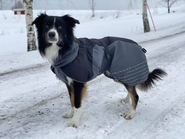 Bilde av Dekken Clacier wool jaket