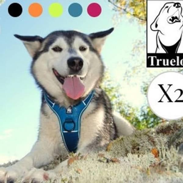 Bilde av Truelove X2