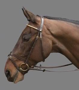 Bilde av Mountain Horse Gladstone Hodelag