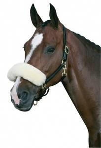 Bilde av Horse Guard Nesepus