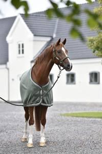 Bilde av Rider By Horse Platinum Freedom