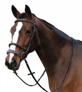 Bilde av Horse Guard Ergo Hodelag 2