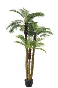 Bilde av Palm Tree 3 deler Ekte Touch