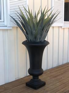 Bilde av Agave palme  H:110cm