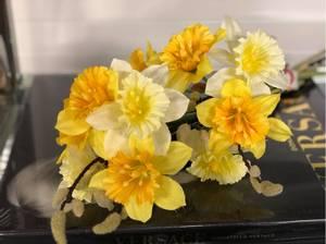 Bilde av Påskeliljer bundt