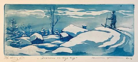 Bilde av Drømmen om lange hopp av Kristian Finborud