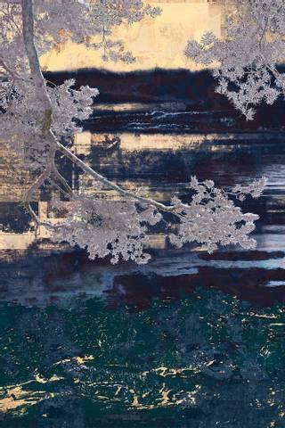 Bilde av Kråkesølv av Maria Natalie Skjeset