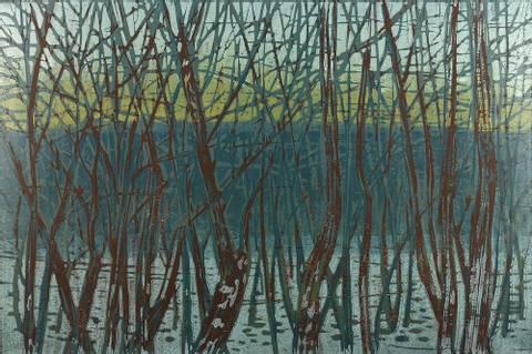 Bilde av Skogen bakenfor trærne av Jane Hupe