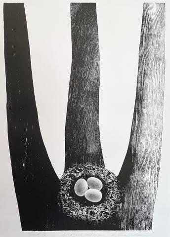 Bilde av Drømmer om vinger III (sort-hvitt) av Trine Lindheim