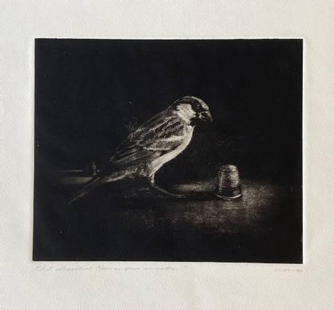 Bilde av Som en spurv om natten av Ole Rosén